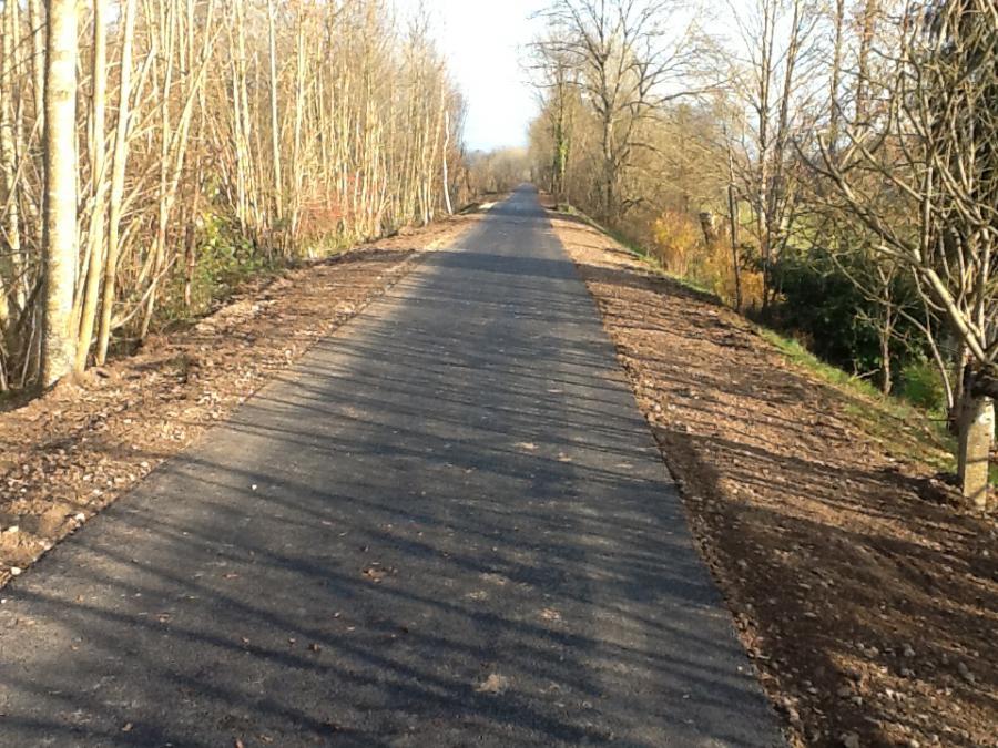 Forêt de Villersexel